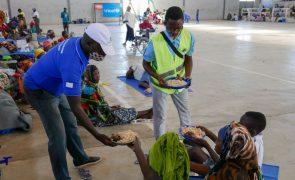 Moçambique/Ataques: Bispo de Pemba alerta para criação de