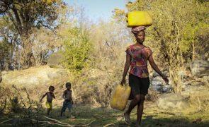 ONG diz que seca no sul de Angola