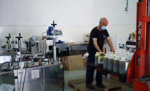 Exportações de azeite sobem 5% até junho e consumo recua - associação