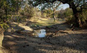 Presidente angolano autoriza concurso para fornecer água a 21 comunas afetadas pela seca