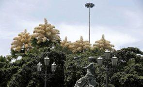Brasil diz que Sítio Burle Marx reflete o seu compromisso com a biodiversidade