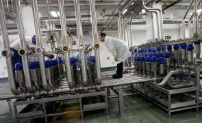 Trabalhadores da Super Bock convocam greve entre 5 e 10 de agosto