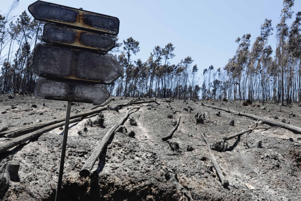 Seguradoras pagam 18,8 milhões de euros em indemnizações por incêndios mas valor pode subir