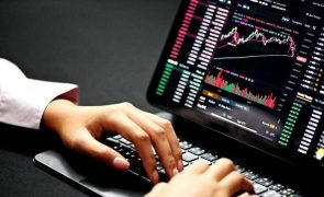Conceito de Economia Digital revoluciona o setor e conquista portugueses