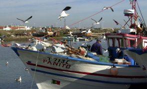 Pescadores de Tavira criticam interdição de captura de canilha