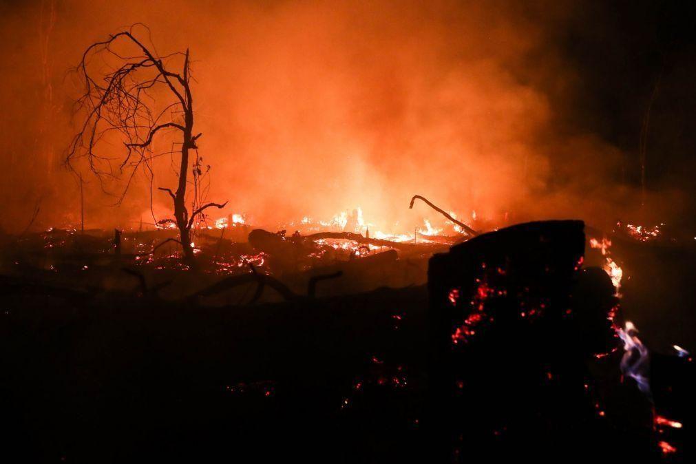 Incêndios na amazónia brasileira caem em julho