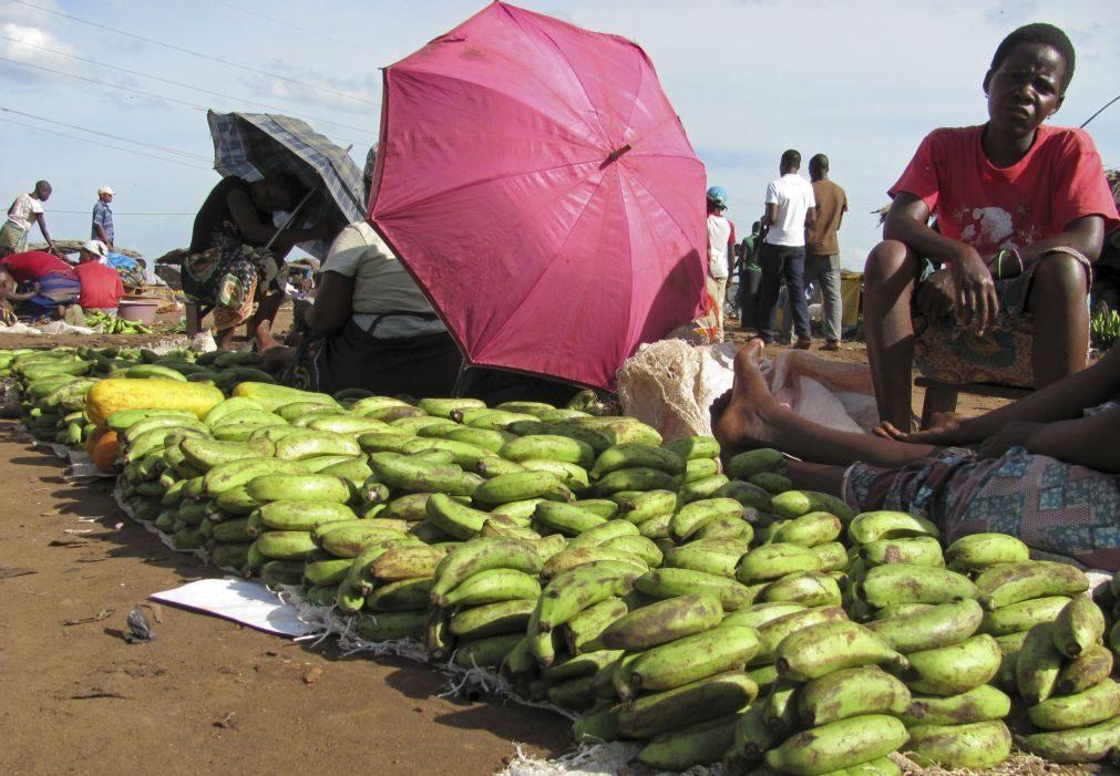 Aumento da fome e falta de chuva coloca em estado de alerta África Oriental