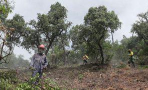 Governo cria grupo de trabalho para propor medidas de concentração de terrenos rústicos