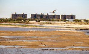 Seca no Brasil deixa Rio Paraná no nível mais baixo em 80 anos