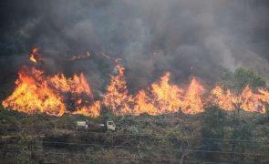 Cinquenta municípios em risco máximo de incêndio