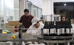 Exportações de vinho sobem 14,5% em volume e atingem quase 436 ME até junho