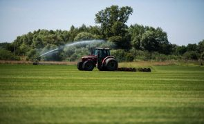 Agricultores acusam Governo de