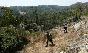 Incêndios: Forças Armadas vão reforçar dispositivo de vigilância