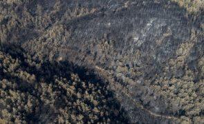 Oito pessoas morrem na queda de avião de combate a incêndios na Turquia