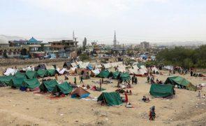 Afeganistão: Talibãs têm ordens para não entrar em Cabul