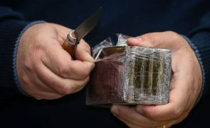 Seis detidos por tráfico de estupefacientes e associação criminosa