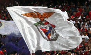LC: Benfica com 'teste de fogo' diante do PSV na 'antecâmara' da Liga dos Campeões