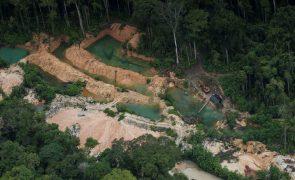 Nova corrida do ouro ameaça a floresta amazónica no Brasil
