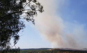 Incêndio em Manique do Intendente com grande mobilização de meios [vídeos]