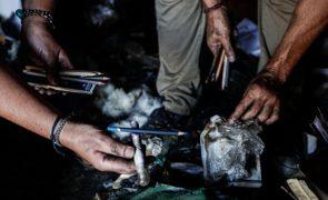 Incêndios: Homem de 20 anos sofreu queimaduras no fogo em Odemira
