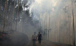 Detido em Águeda suposto incendiário retido por populares