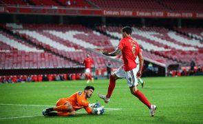 Darwin e Rodrigo Pinho nos convocados do Benfica, sem Luca Waldschmidt