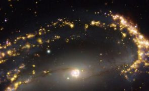 Microssatélites estão a ser um problema para a qualidade do céu -  astrónoma Teresa Lago