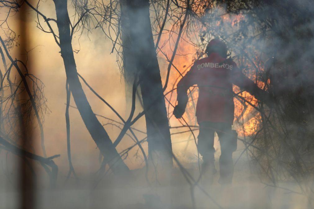 Incêndios: Proteção Civil diz que comunicações