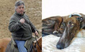 Veja como estão os cães maltratados por João Moura
