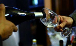 Dez quintas de vinho verde estarão de portas abertas a 4 de setembro