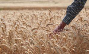 Práticas comerciais desleais na cadeia alimentar com novas regras a partir de novembro