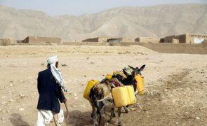 ONU apela a doadores para ajudar Afeganistão a enfrentar seca
