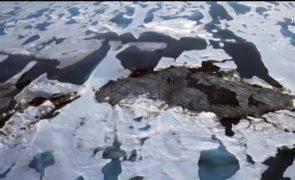 Cientistas descobrem ilha mais a Norte do mundo por acidente