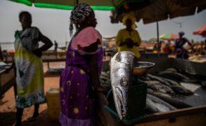 Covid-19: Pescadores guineenses lamentam pescado a estragar-se devido a fecho de mercados