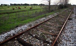 Portugal longe de ter uma das melhores redes ferroviárias da Europa - Ministro