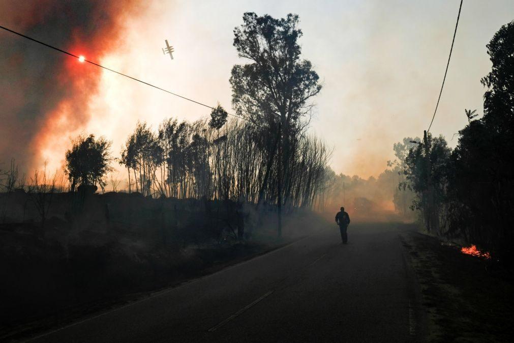 Fogo de Mangualde consumiu mais de 50% da área da freguesia de Tavares