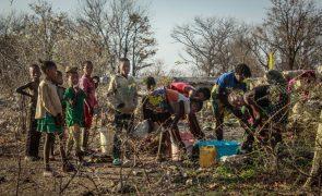 Angola quer regresso ao país de cerca de 3.000 pessoas que fugiram para a Namibia devido à seca