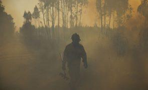 Incêndios: Mais de 100 bombeiros combatem fogo em zona florestal em Tomar