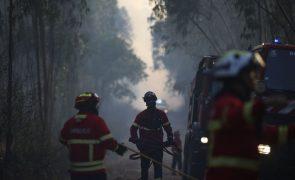 Dominado fogo que deflagrou em zona florestal em Tomar