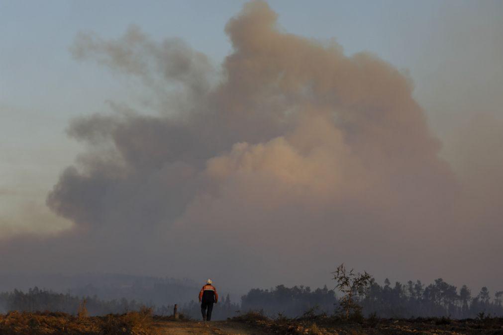Incêndios: Detido presumível autor do fogo ocorrido na quinta-feira em Tomar