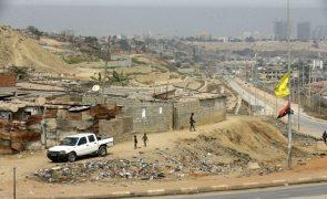 Polícia detém em Luanda homem com 15 cães congelados na mala do carro