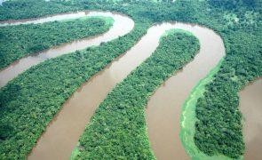 Investigadores criam estimulantes para plantas resistirem a alterações climáticas