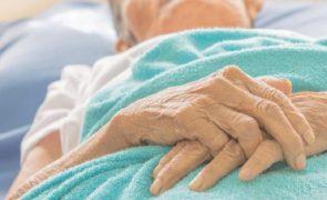Mais de 19 mil doentes estão em risco de desnutrição
