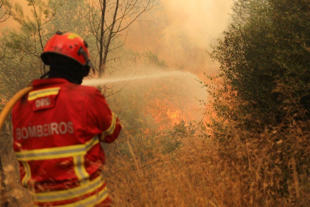 Incêndios: Combate ao fogo em Lagos já mobiliza 200 homens e nove meios aéreos