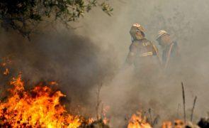 Homem de 64 anos detido por suspeita de atear fogo florestal em Soure