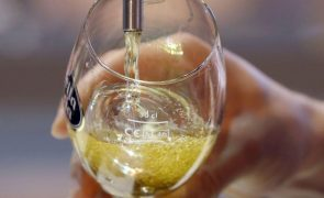 Setor cervejeiro vale cerca de 1,5% do PIB