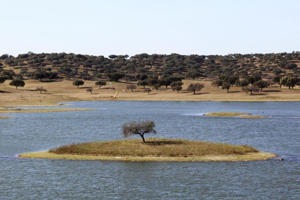 CNA quer que Governo peça ajuda ao fundo de solidariedade europeu para a seca