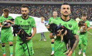 Jogadores do futebol romeno entram em campo com cães abandonados