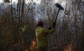 Onze concelhos de Faro e Santarém com risco muito elevado de incêndio