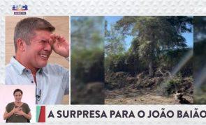 João Baião chora compulsivamente com surpresa de Diana Chaves